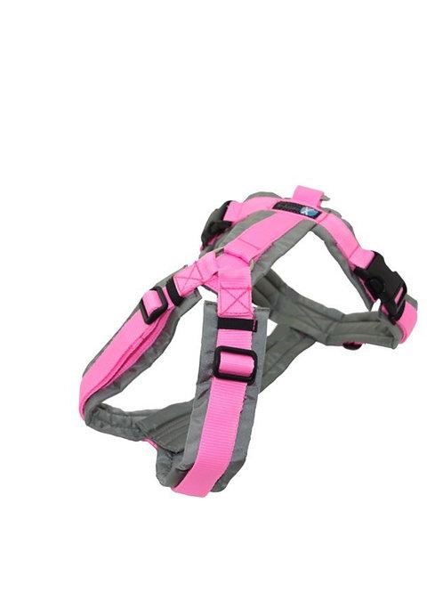 Anny x Brustgeschirr FUN Limited Edition, Farbe : grau-rosa