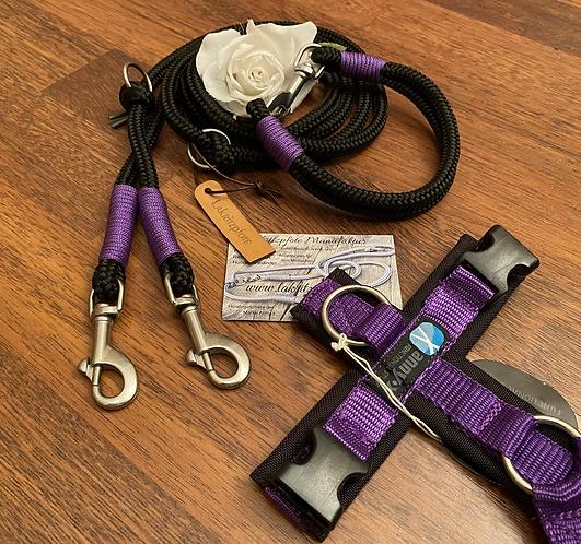 Halsband + Leine Set in schwarz-lila