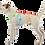 Thumbnail: Hundewintermantel Toppa, Farbe : Mint