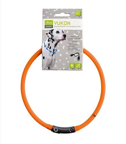 LED - Leuchthalsband, Farbe : orange