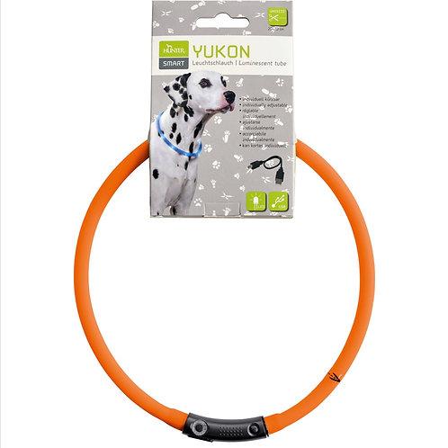 Hunter LED - Leuchthalsband, Farbe : orange