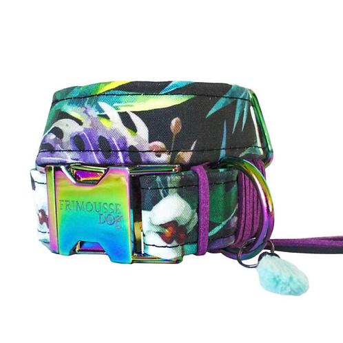 "Frimousse Hundehalsband ""Rainbow"", Gr. S"