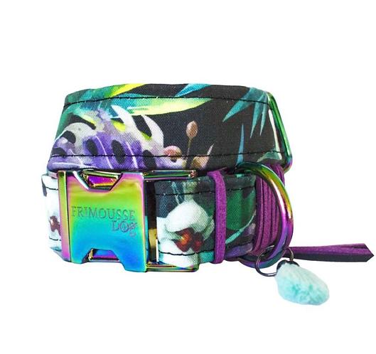 """Hundehalsband """"Rainbow"""", Gr. S"""