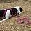 Thumbnail: Lakritzpfote Führleine pink-schwarz