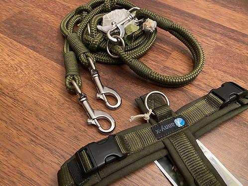 Halsband + Leine Set in oliv-oliv