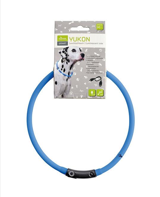 LED - Leuchthalsband, Farbe : blau