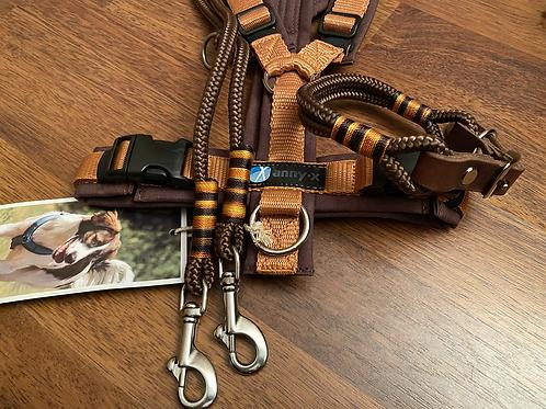 Tau-Leder Halsband + Leine Set in braun-bernstein
