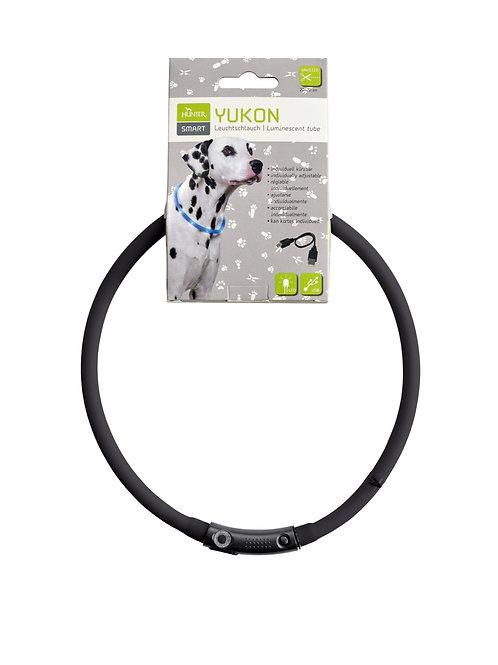 Hunter LED - Leuchthalsband, Farbe : schwarz