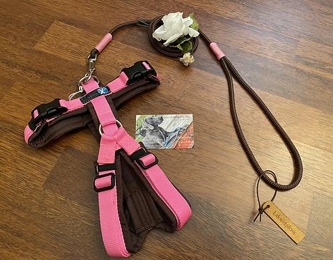 Führleine braun-rosa