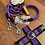 Thumbnail: Halsband + Leine Set in lila-schwarz