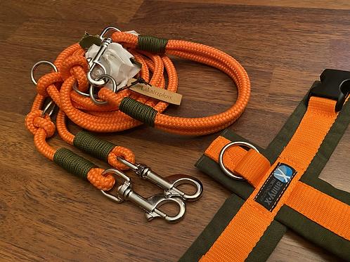 Halsband + Leine Set in orange-oliv
