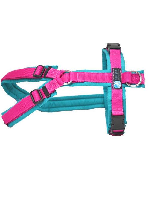 Anny x Brustgeschirr FUN Limited Edition, Farbe : petrol- pink