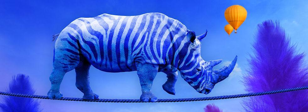 rhino pano.jpg