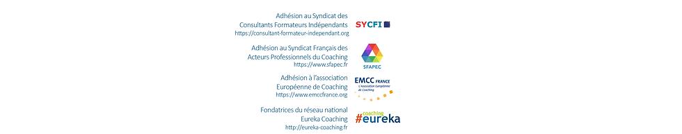 image emmc eureka sycfi 4.png