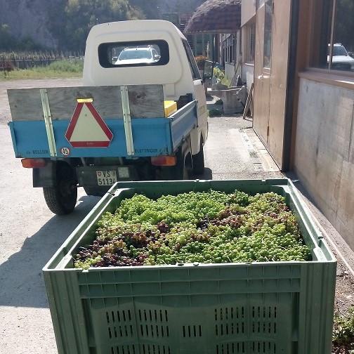 Transport mit e-LKW