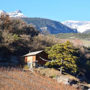 zwischen Tal und Berg