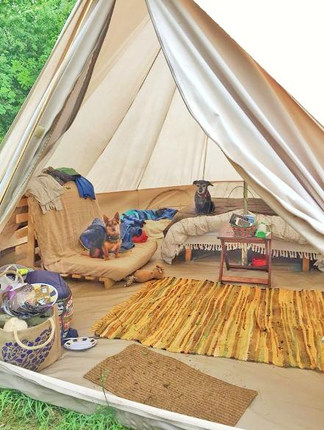Glamping bell tent at Dorothy Goes Glamping