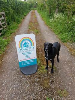 black dog standing next to dorothy goes