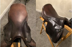 before and after of brown horse riding s