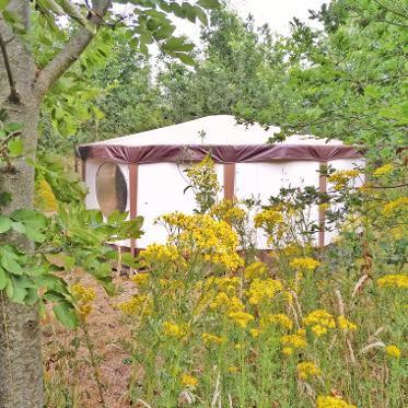 Luxury yurt accommodation at Dorothy Goes Glamping