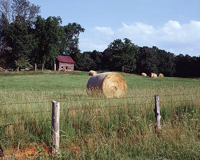 Rural_farm_scene,_North_Carolina_LCCN201