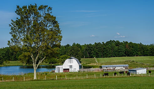 Hawkins_Road_farm_-_panoramio.jpg