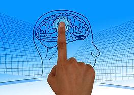 cerveau brain-770044_1920.jpg