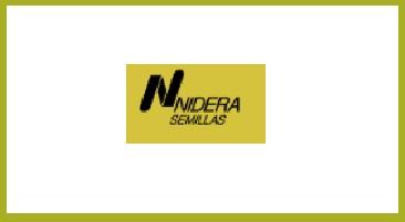 nidera nuevo
