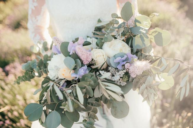 lavender80.jpg