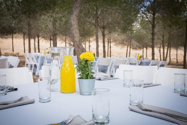 breakfast  outdoors next to Mitzpe Ramon Israel