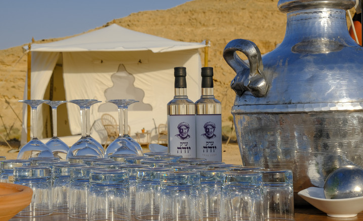 Luxury tents in the desert.jpg