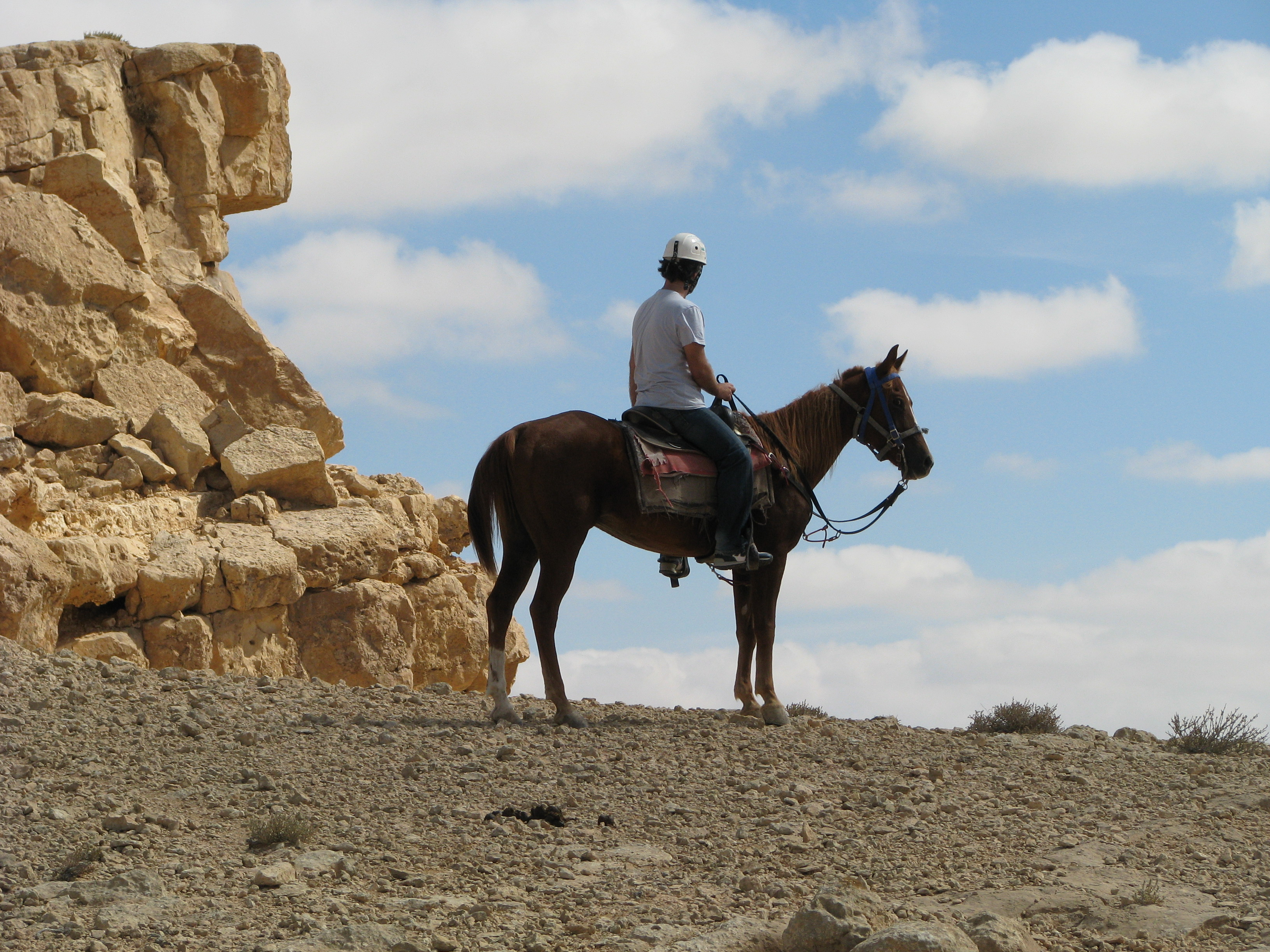 horse riding in the ramon crater