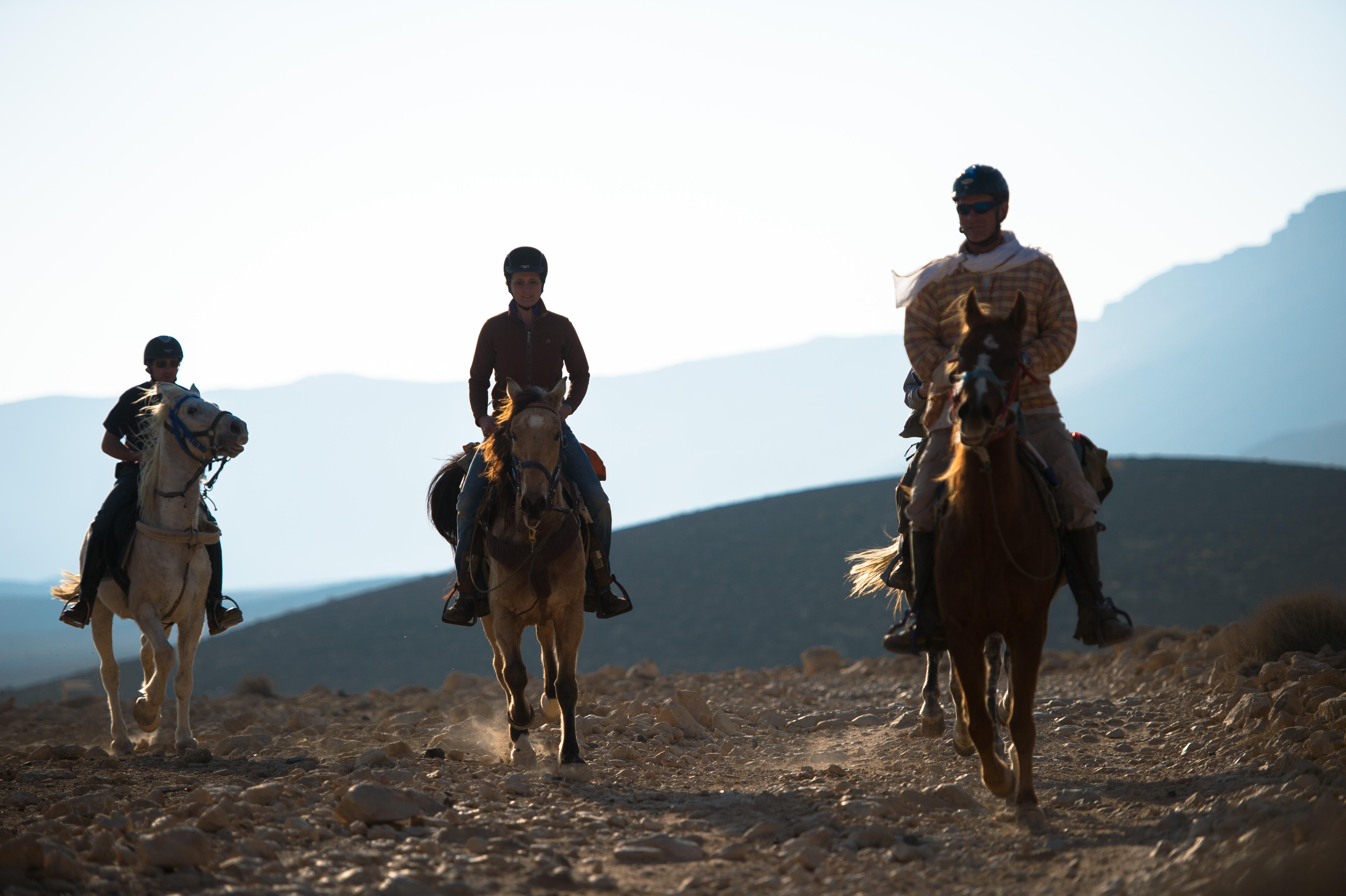israel desert horse riding