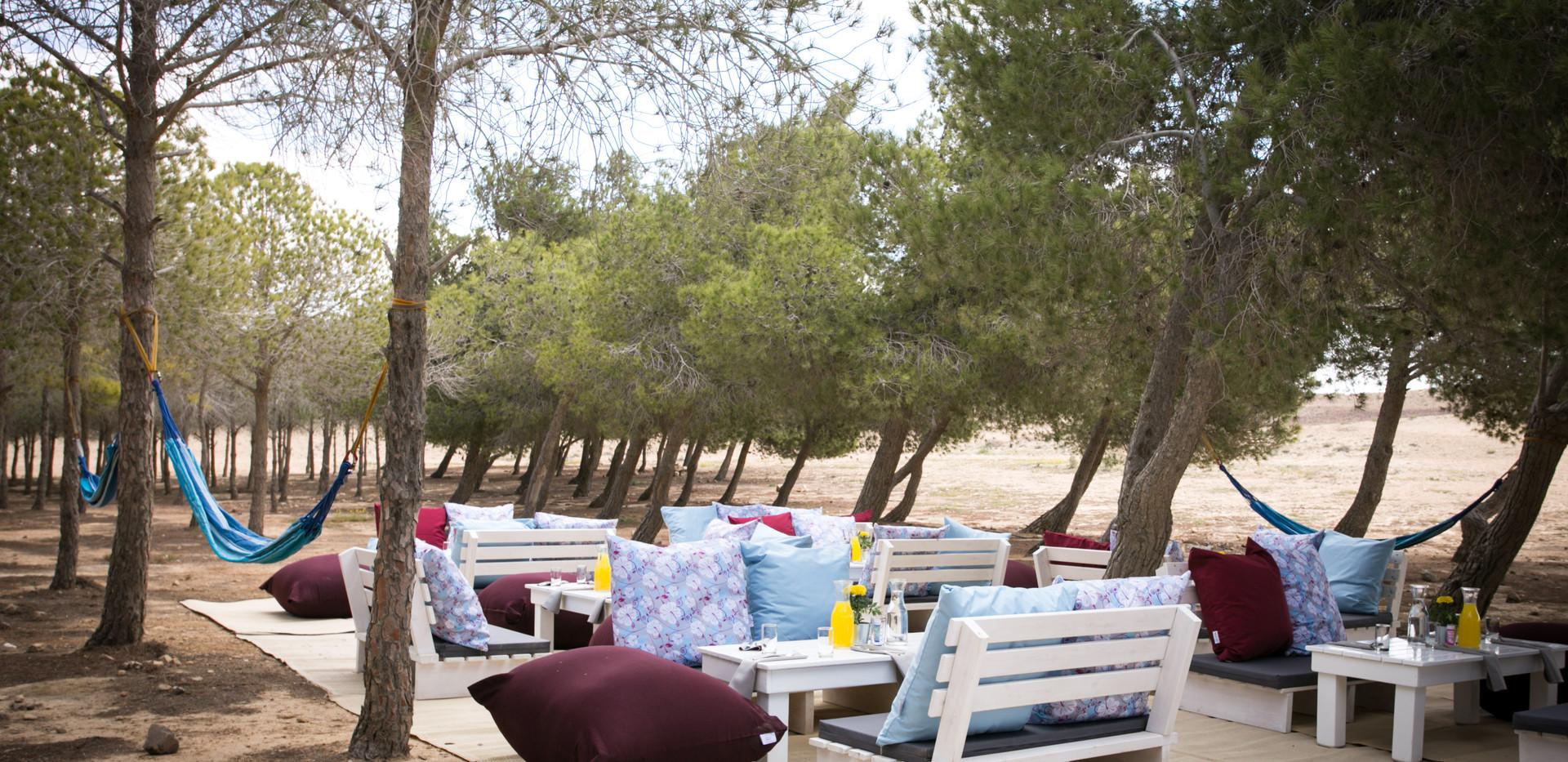 Events in Mitzpe ramon desert Israel