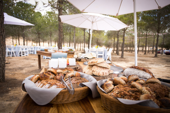Outdoor brunch in the desert with local baked goods