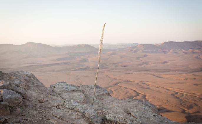 Unique locations for desert events in Israeli