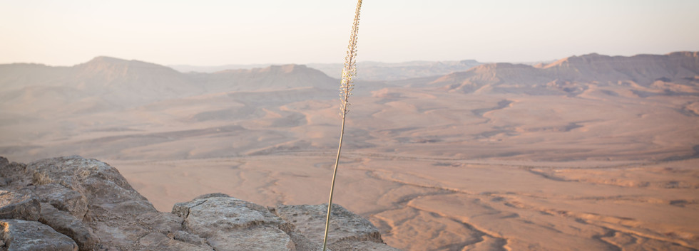 Unique locations for desert events in Israeli