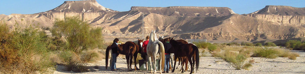 Desert horse riding expeditions with camping