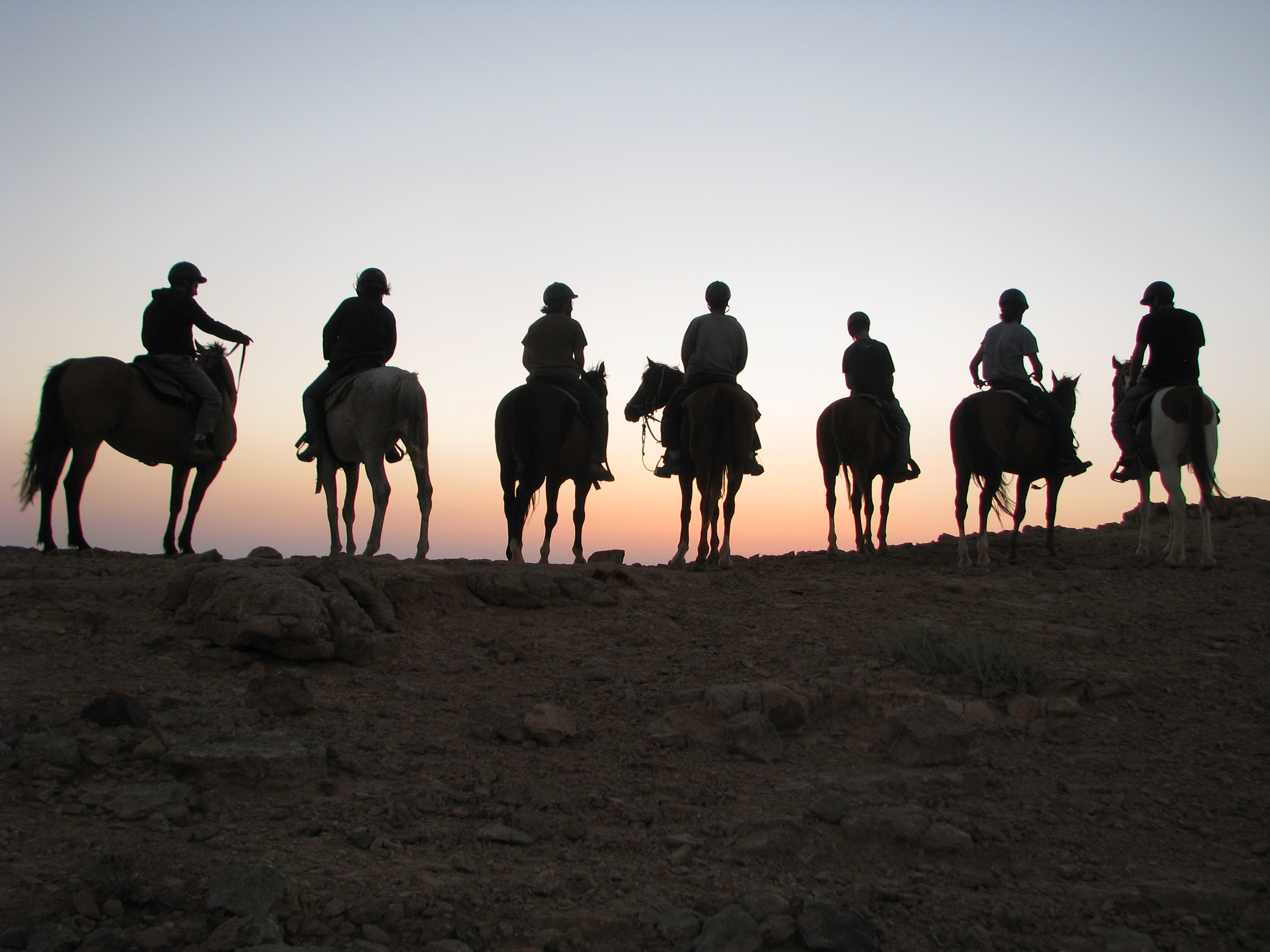 mitzpe ramon horse riding tours