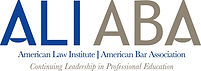 American Bar Association presentation & communication skills training