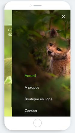 Les livres de la forêt contes pour enfants par Sylvain Mangel et marie F Houlbrèque