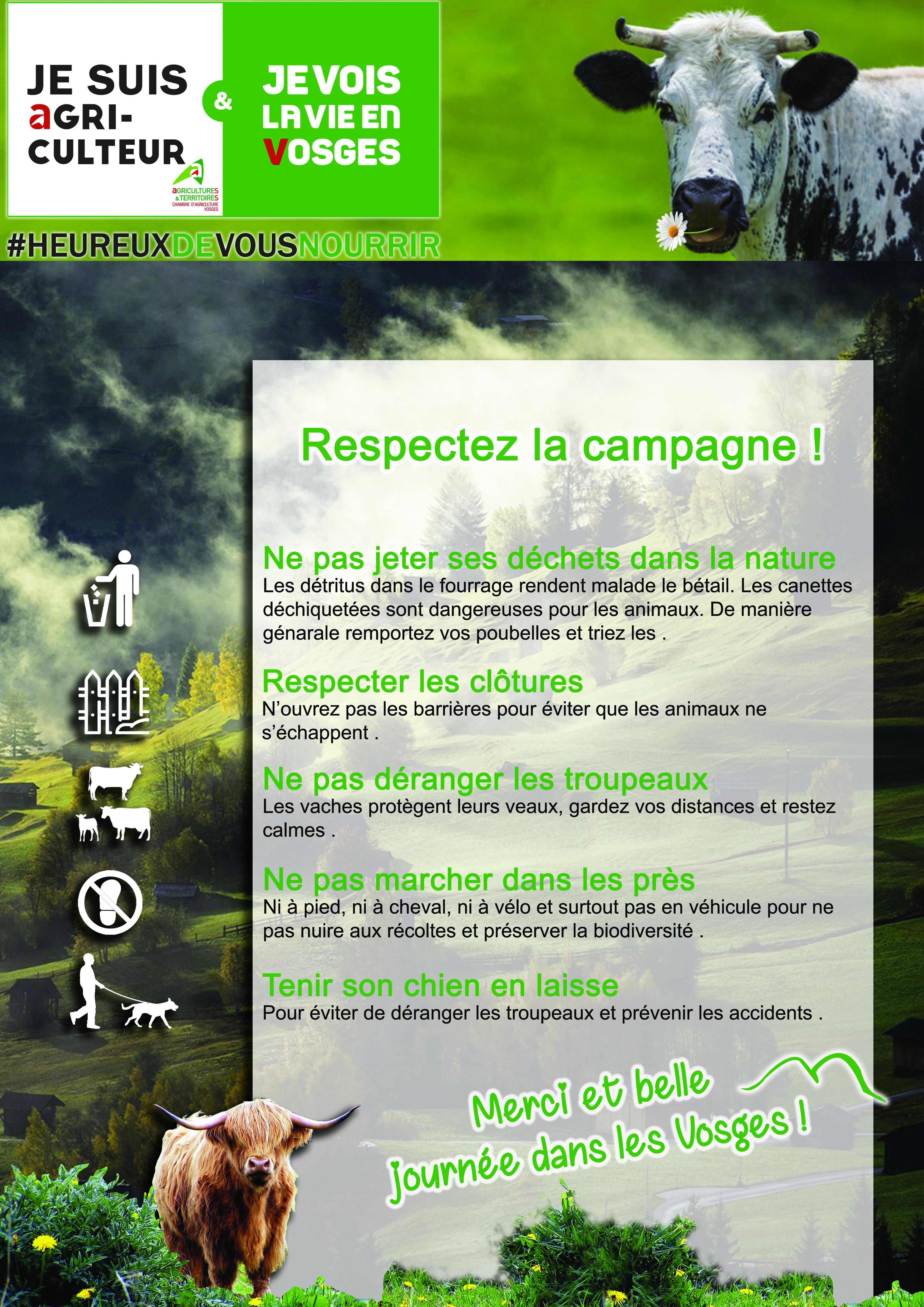 Infographie Anaïs Claude