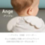 6.Ange-1.png