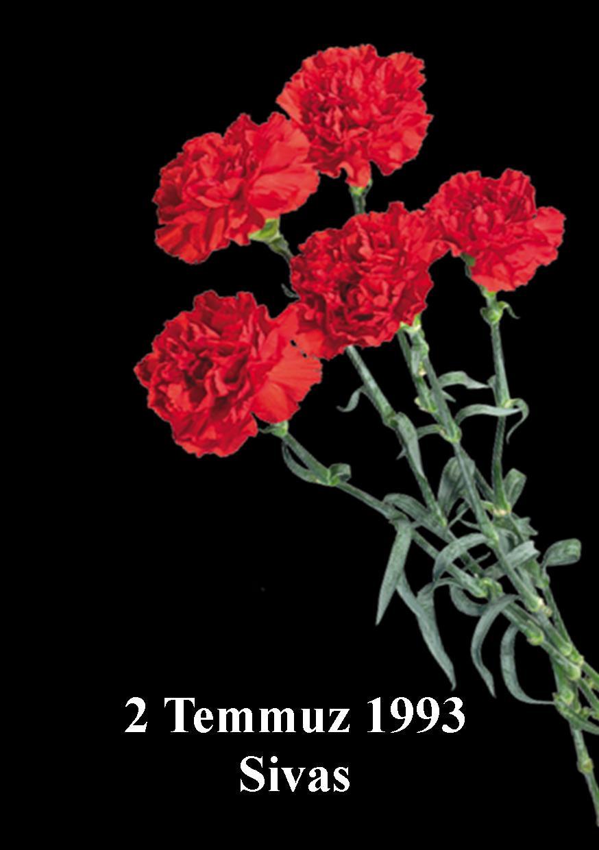2 TEMMUZ 1993.jpg