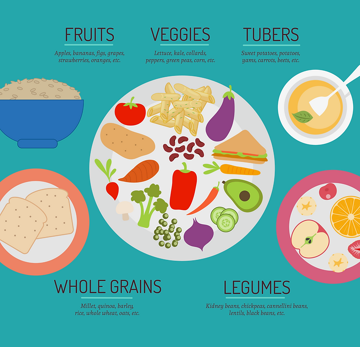 Food-Pyramid, vegan, plant-based, legumes, whole grains,