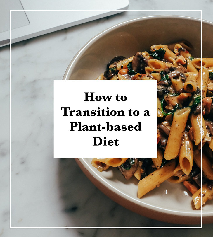 vegan, How to transition to a plant-based diet