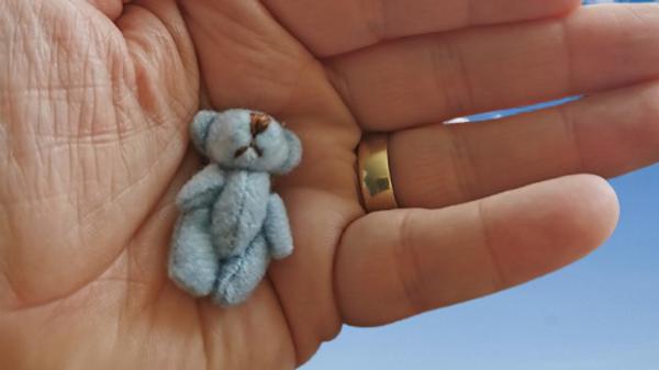 baby coffins teddies blue bear
