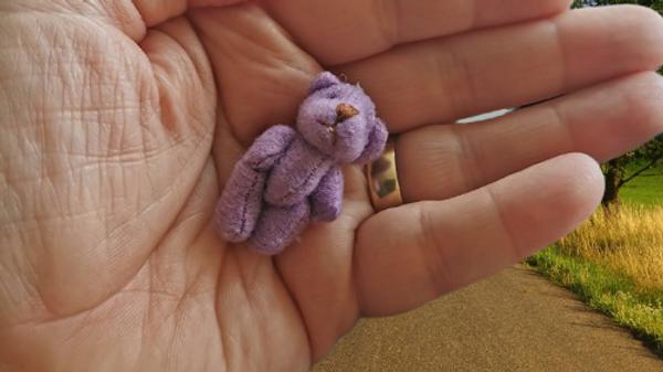 baby coffins teddies tiny lilac