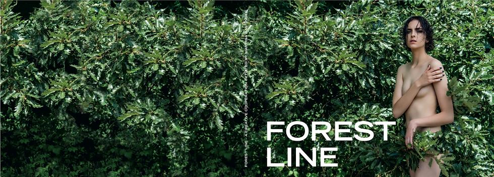 ARTBOOK *FOREST LINE*
