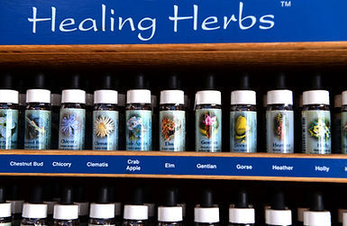 selection of healing herbs